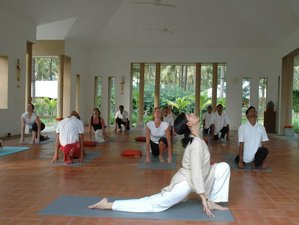 8 Days Meditation, Yoga and Spiritual Retreat in India