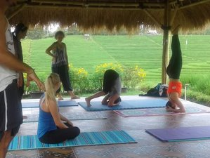 4 Days Balinese Culture, Meditation, and Yoga Holiday in Tabanan, Bali