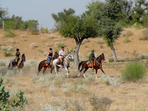 8 Day Nawalgarh to Mehansar Castle Horse Riding Holiday in Rajasthan