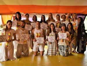 28 Days 200 Hours Multi-Style Yoga Teacher Training in Dharamsala