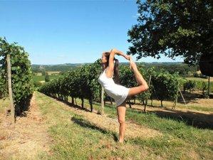 25 días 200 horas profesorado de yoga en Francia
