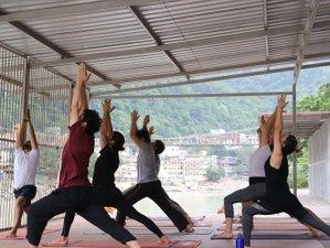 7 Days 50 Hours Intensive Yoga Teacher Training in Rishikesh, India