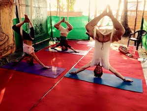 7 Days Aerial Yoga Teacher Training in India