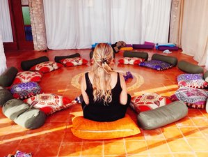 7 Day Online Find Your Bliss in 2020 Womb Awakening Personalized Retreat over Zoom
