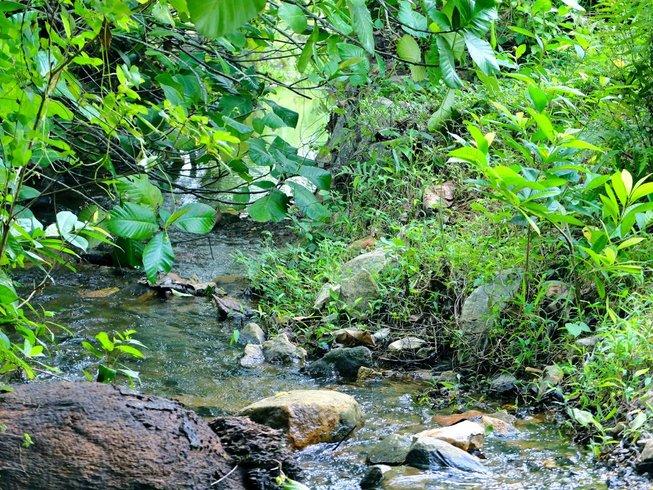 15 Tage Yoga und Ayurveda Urlaub in Kalutara, Sri Lanka