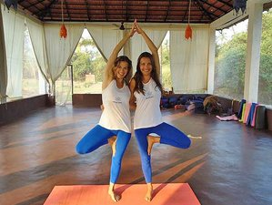 25 Day 200-Hour Yoga Teacher Training in Dharmashala