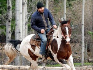 7 Days Adventurous Horse Riding Holiday and Ranch Vacation in British Columbia, Canada