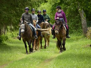 3 Days Adventurous Horse Riding Holiday in Muhu, Estonia