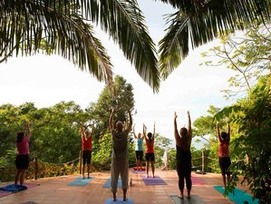 8 Days Jungle, Surf, and Yoga Retreat Nayarit, Mexico