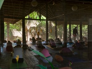14 Days Rejuvenating Urban Antidote Yoga Retreat in Goa, India
