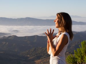 8 Day Back to Earth Luxury Yoga Retreat in Sayulita, Nayarit