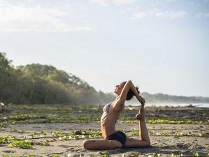25 Days 200-Hour Sacred Waters Yoga Teacher Training in Badung, Bali