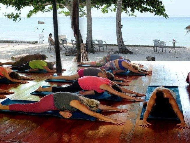 29 días despertar, meditación sanadora y retiro de yoga en Ko Phangan, Tailandia