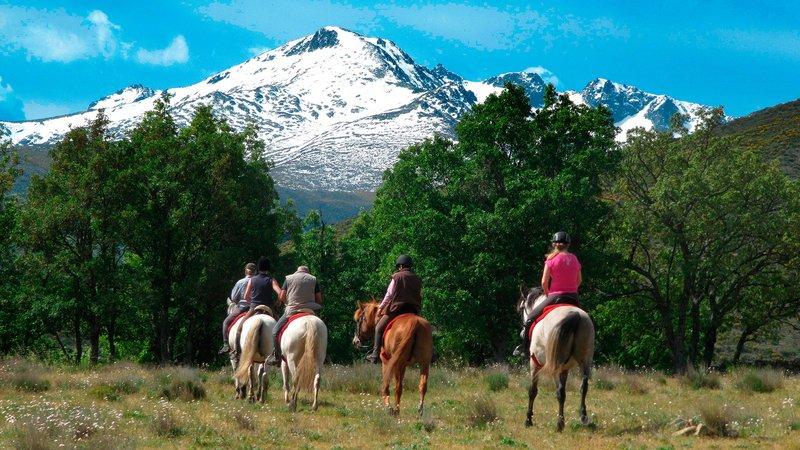 Afbeeldingsresultaat voor pilgrimage to guadalupe on horseback