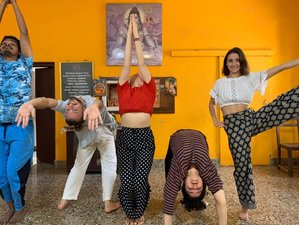 28 Day Integral Intensive Ashtanga Yoga Teacher Training in Mysore