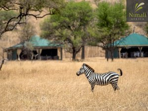 8 Days Wildlife Safari Tour in Tanzania