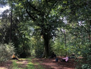 4 Day Shamanic Yoga Retreat 'Wild and Sacred' in the Belgian Ardennes, Hodister