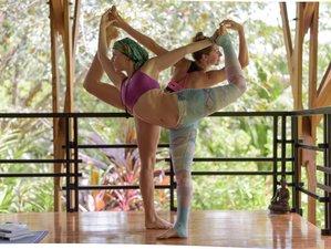 21 Tage 300-Stunden Yogalehrer Ausbildung für Fortgeschrittene und Intensives Immersion Retreat in Montezuma