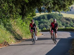 9 Day Cycling Tour in Liguria and Tuscany, Italy