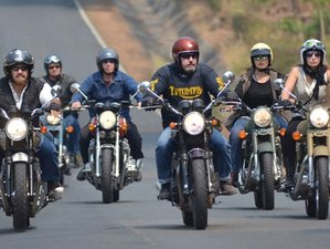 7 Day Golden Triangle Guided Motorbike Tour in Thailand