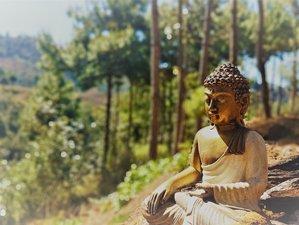 12 Day Silent Meditation Retreat in San Cristobal de las Casas, Chiapas