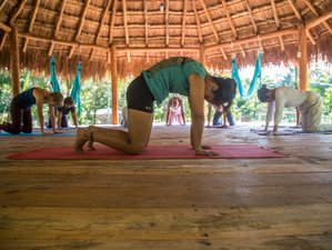 4 Day Yoga and Snorkeling Holiday in Cozumel