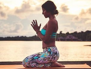 5 Days Explore Hawaii Yoga Retreat in USA