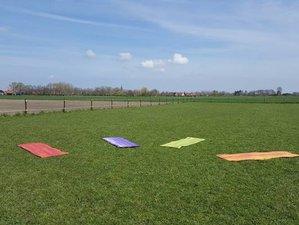 3-Daagse 'Free Your Mind' Yoga Retreat en Coaching met Paarden in Zeeland