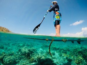 8 Days Diving and SUP Holiday in Komodo National Park, Indonesia