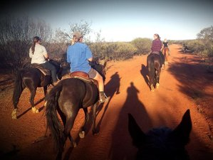 6 Days Camp-out and Horseback Riding Holiday in Yalgoo, Western Australia