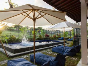 The Nest Canggu Surf Hostel and Homestay in Badung, Bali