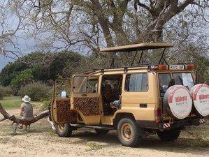 4 Days Udzungwa and Mikumi Safari in Tanzania