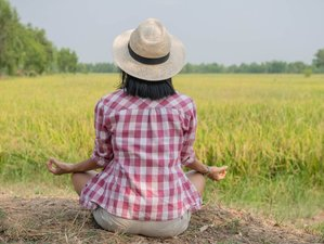 5 Day Attract Your Lover and Soulmate Luxury Transformative Coaching Retreat in Chiang Mai