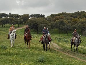 3 Days Unforgettable Horse Riding and Ranch Vacation in the Countryside of Vilches, Spain