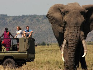 7 Days Camping Chobe National Park Safari