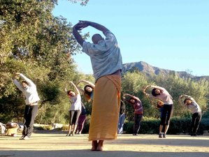 3 Days Spring Yoga Retreat in California