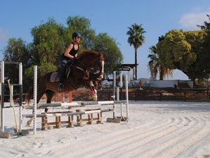 5 Day Intensive  Show Jumping, Dressage & Working Equitation Riding Holiday in Malaga Province