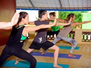 22 Day 200-Hour Hatha, Flow, and Ashtanga Vinyasa Yoga Teacher Training Course in Kerala