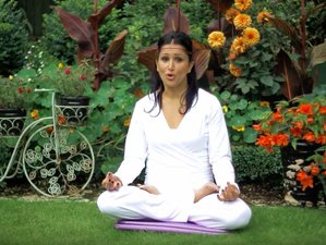 4 Days New Year Yoga & Meditation Retreat UK