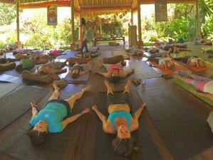 22 Days 200 Hours Hatha Intuitive Flow Yoga Teacher Training in Bali, Indonesia