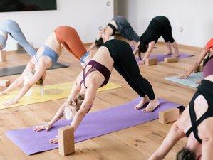 5 días de retiro de chikung, yoga ayurveda y naturaleza en Pineda de Mar, Barcelona