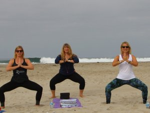 21 Day VIRTUAL Online Immersion 200-Hour Hatha and Vinyasa Yoga Teacher Training