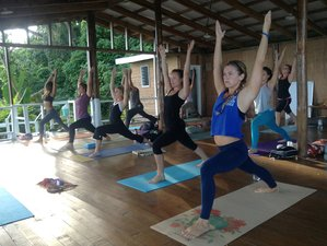 24 Days 200-Hour Yoga Teacher Training in Bali
