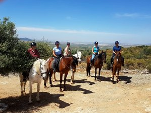 5 Day Extraordinary Horse Riding Holiday in Mollina, Malaga