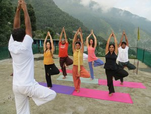 28 Days 200-Hour Yoga Teacher Training in Rishikesh India