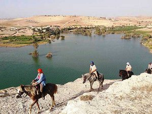 8 Day The Knights of Essaouira Horse Riding Holiday in Essaouira