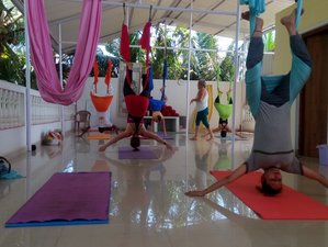 12 Days 100 Hour Aerial and Yin Yoga Teacher Training in Goa, India