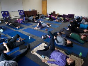 4-Day Sound Healing, Empowerment and Flow Yoga Retreat in Cobb, California