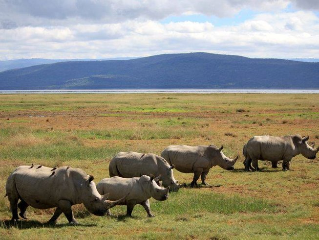 3 Days Budget Camp Safari in Masai Mara Kenya