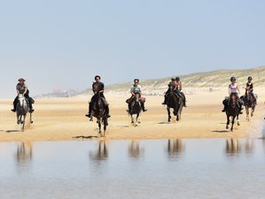 8 Day Flexible Horseback Riding Holiday in Mimizan, Landes